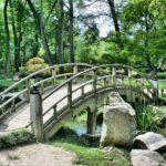 Piękny ,a także uporządkowany ogród to zasługa wielu godzin spędzonych  w jego zaciszu w trakcie jego pielegnacji.